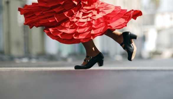 Flamenco @iStockphoto/Rami Katzav
