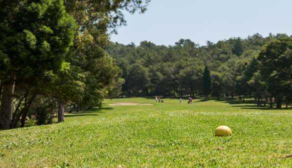 Golfspielen auf Gran Canaria