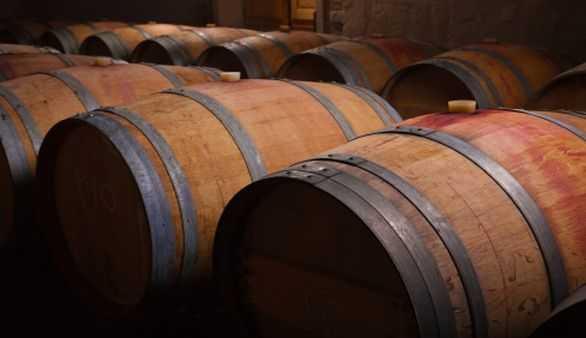 Wein in Spanien